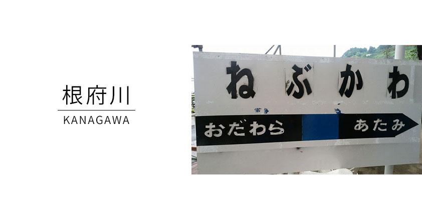 根府川ダイビングサービス