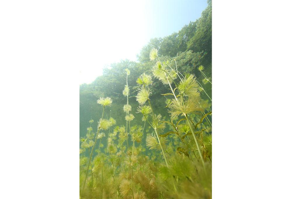 post-iwama190514-09